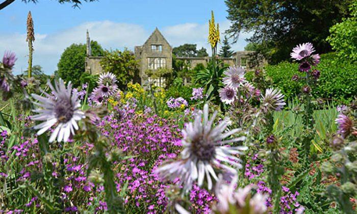 Bnai Brith Heritage Day - Nymans Garden